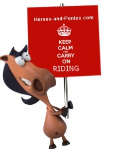 Keep Calm While Working with Horses