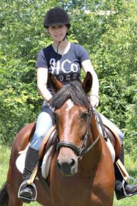 standardbred horse up for adoption