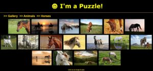 horse puzzle gallery