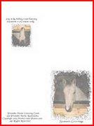 horse called Sirius