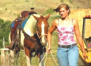rider leading horse