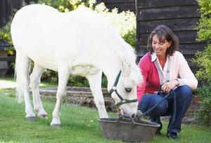 Feeding a Pony