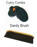 dandy brush and curry comb
